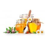 Мед и пчелопродукция